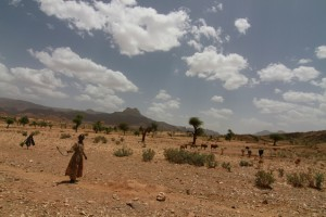 Studies show drying in the Horn of Africa is in step with global warming. (Brian Kahn/IRI)