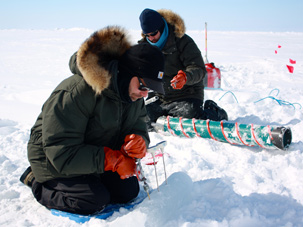 Fieldwork in the Arctic
